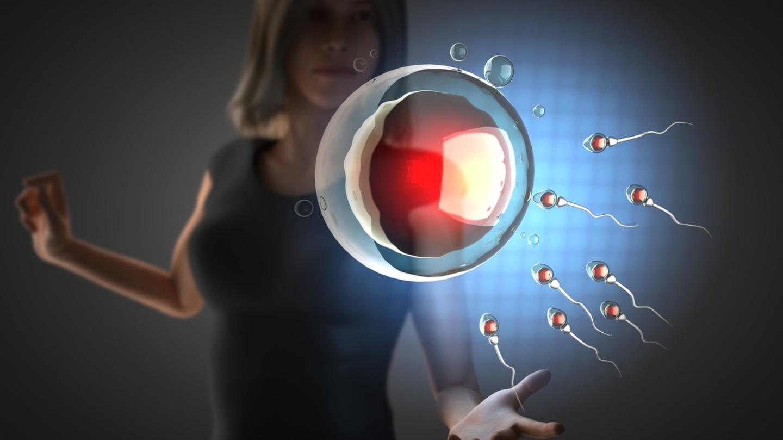 Ovulace pod kontrolou: Co všechno ji může negativně ovlivnit