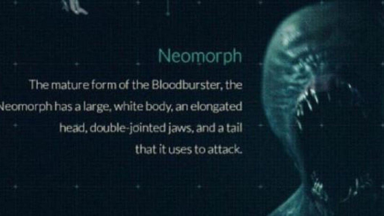 13) Neomorph