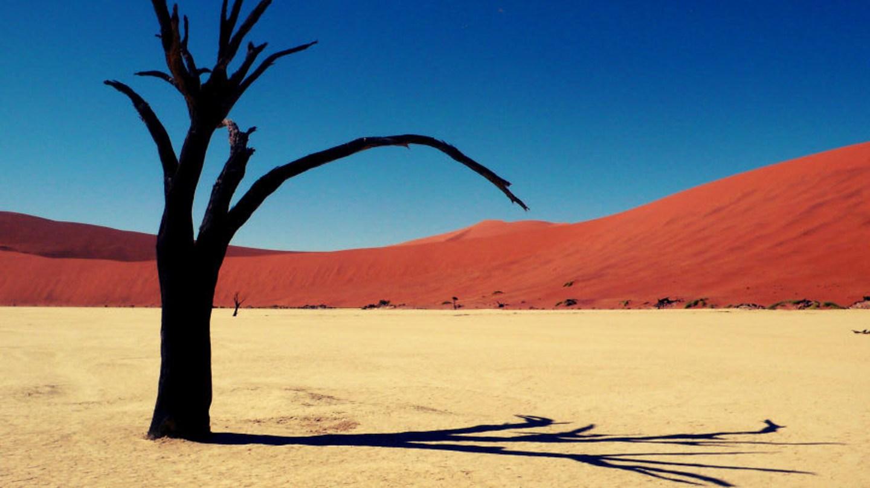 Deadvlei, Namib Naukluft-Park v Namibii