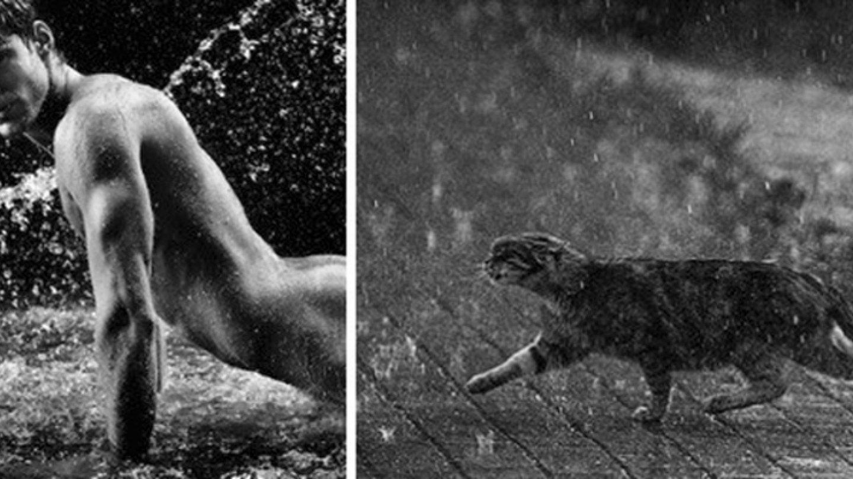 chlapici versus kocky - Obrázek 11