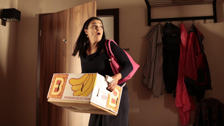 Líza hledá práci. Ve firmě dala hrdě výpověď. Už nechce pracovat s Viktorem a jemu podobnými.