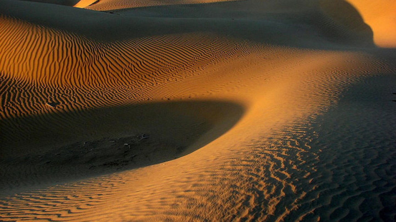 Thárská poušť, Rádžasthán, Indie