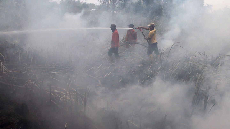 Obří lesní požáry v Indonésii - Obrázek 2