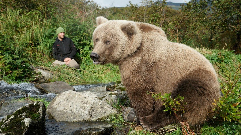 самый огромный медведь в мире фото могла быть