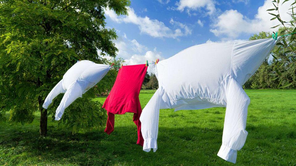 Využijte sílu slunce a větru, sušte prádlo venku aneb jak šetřit, když je teplo 1