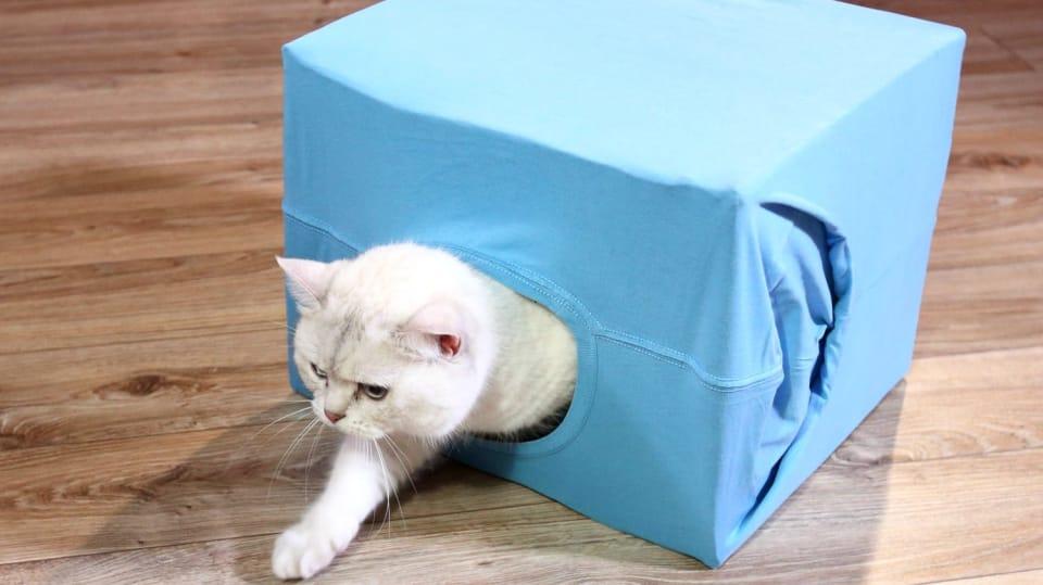 Jak vykouzlit ze starého trika a nepotřebné krabice vychytaný domeček pro kočku 1