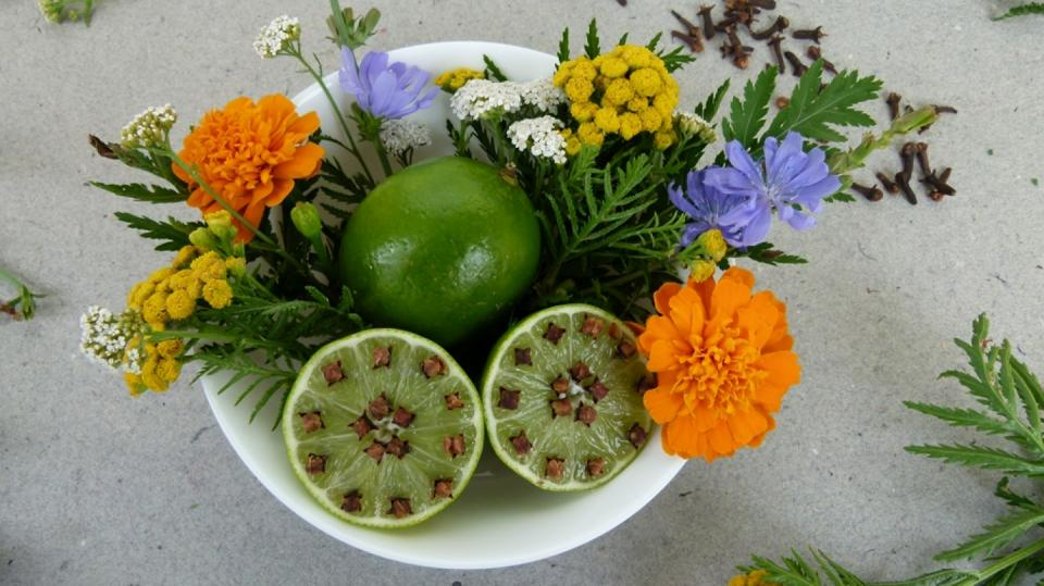 Jak udržet komáry dál od našeho stolu: Limetky a voňavý hřebíček 10