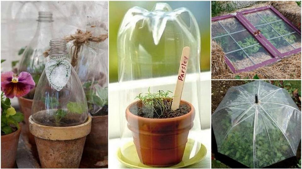 Netradiční kryty a fóliovníky na zahradě