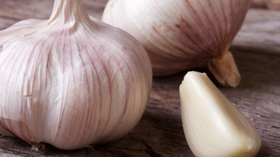 Jarní výsadba česneku začíná v březnu. A víte, jak se pozná kvalitní český česnek?