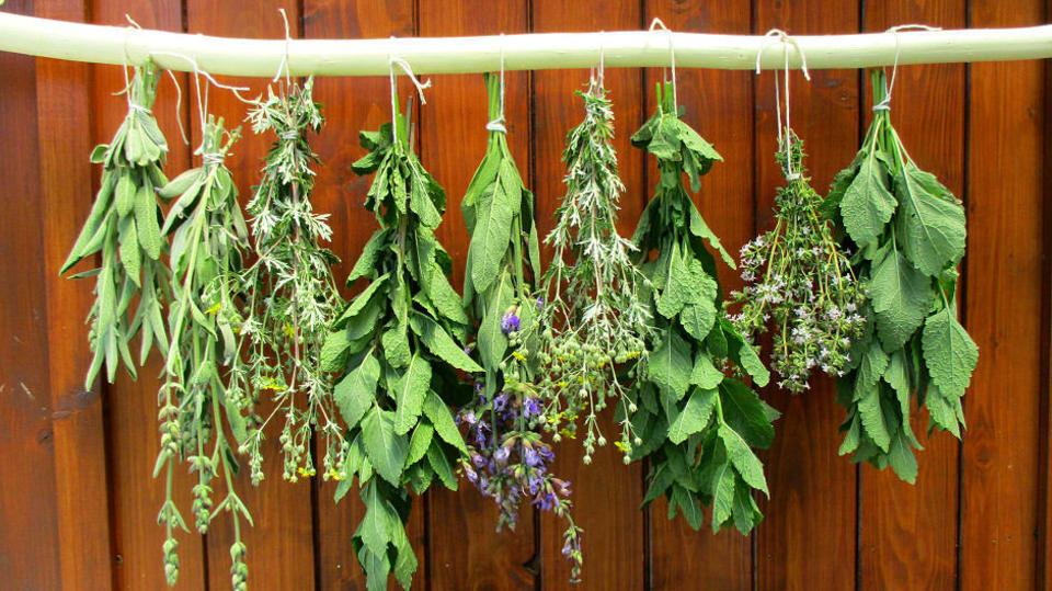 Jak si udělat závěsnou tyč na sušení bylinek na zahradě