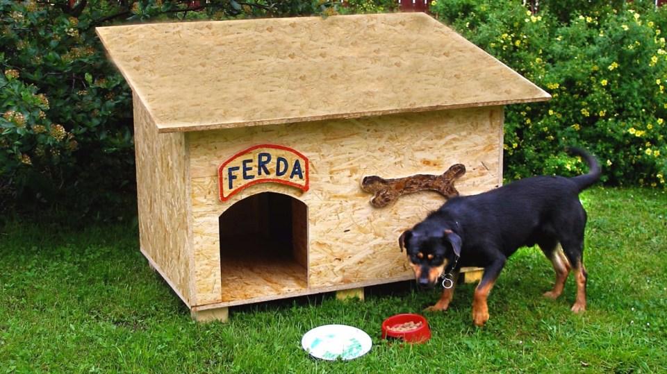 Prima bouda pro psa