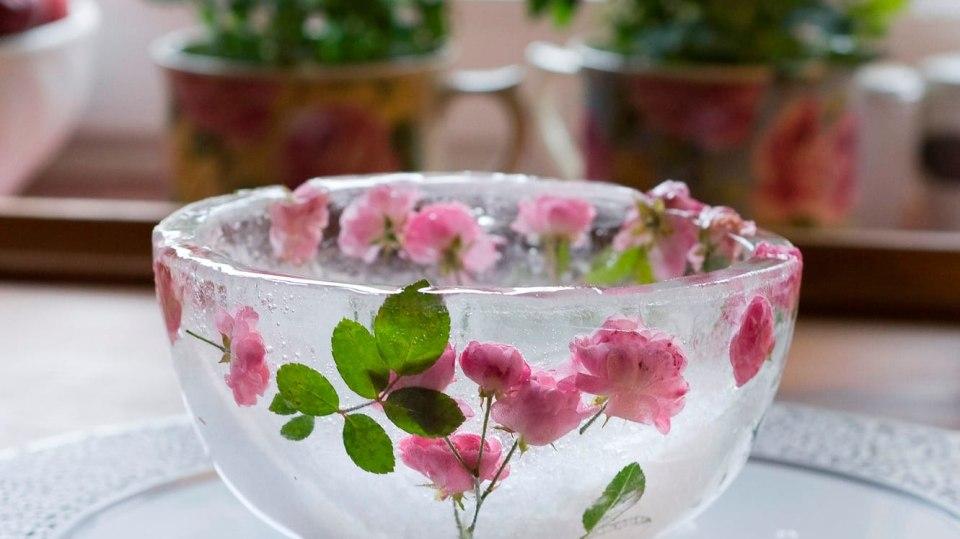 Jak vyrobit misky s růžičkami z ledu: Letní pohár i led v mrazivém chladu 7