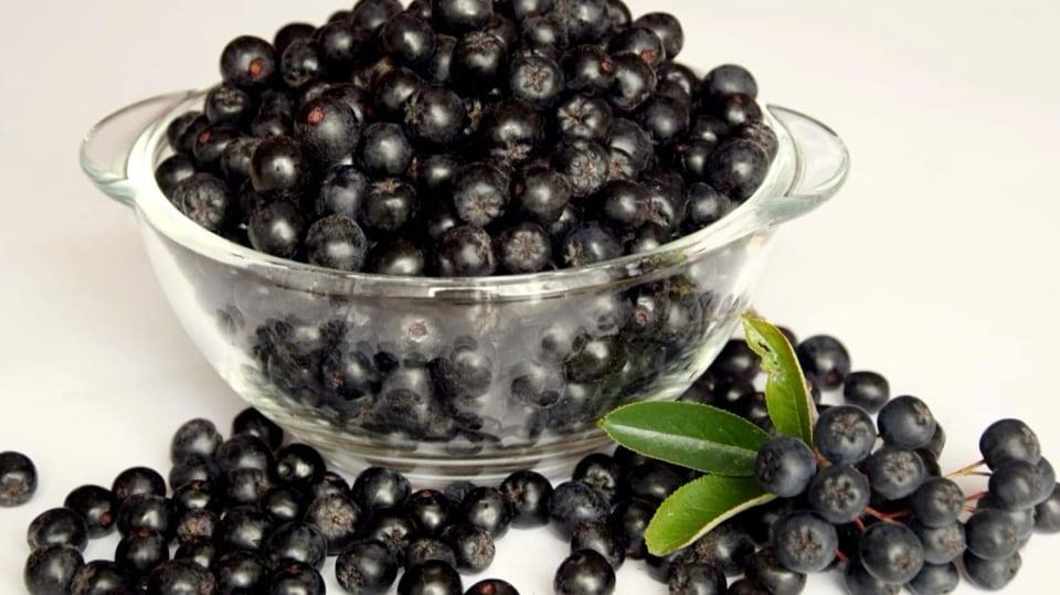 Jak proti chřipce: černé jeřabiny (Aronia melanocarpa)