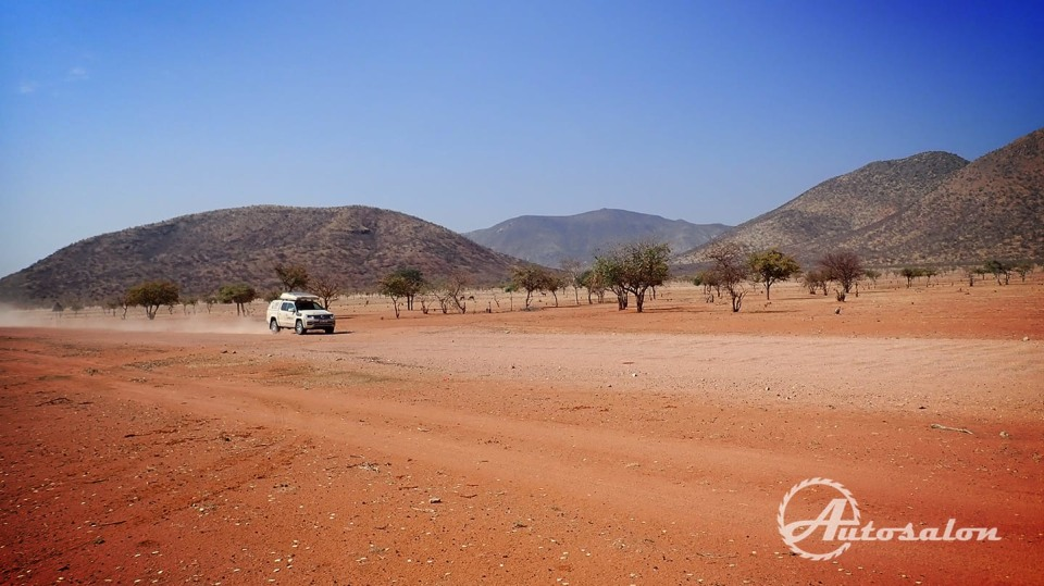 Amarok u vesnice Himbů