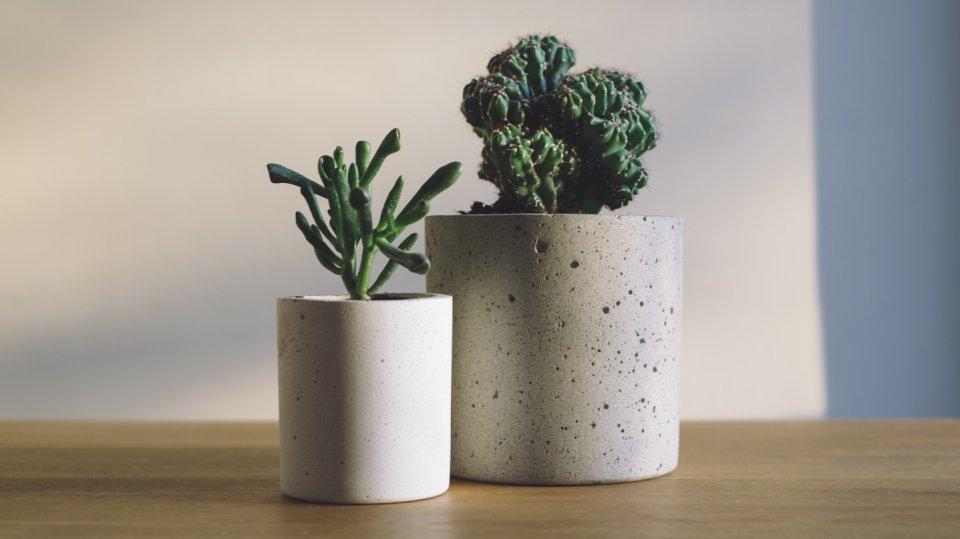 Designové květináčky z cementu