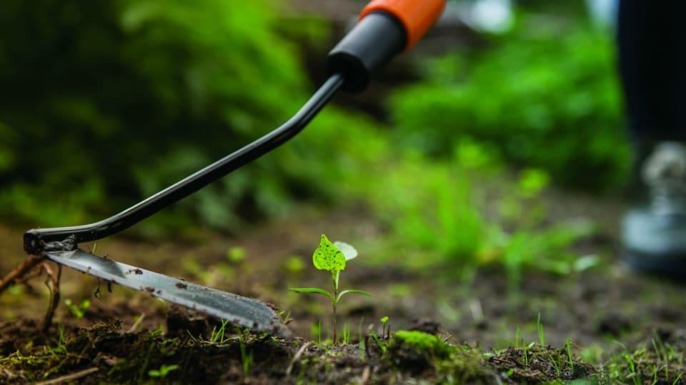 Jak se vyzbrojit do boje s plevelem  2