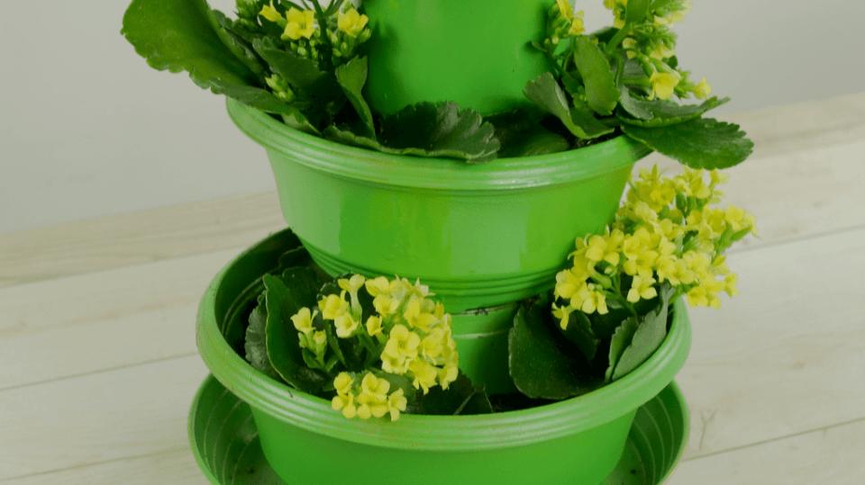 Jak ušetřit místo na parapetu i na balkóně: Třípatrový květináč 3