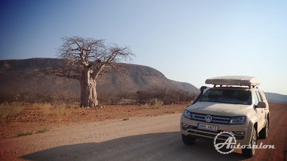 Cesta plná baobabů I