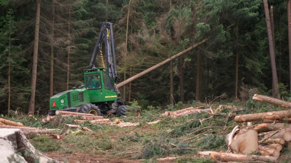 Strom dokáže harvestor naporcovat doslova za pár sekund. 4