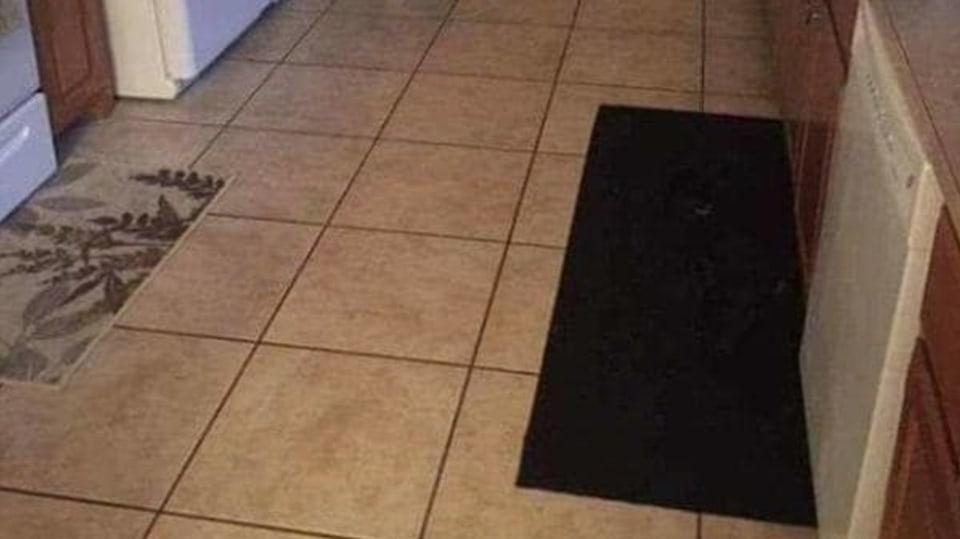 Kde je ukrytý pes?