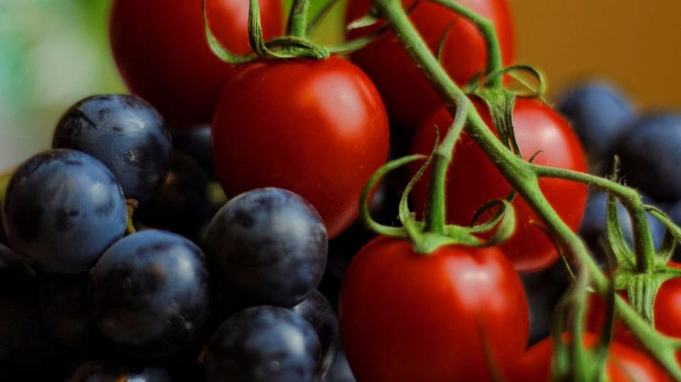 Skrytá řeč rostlin: Víte, co mají společného rajčata a hrozny?