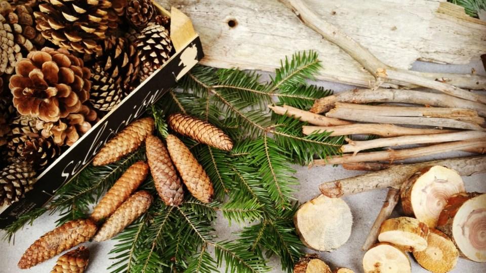 Vánoce budou letos vonět lesem...