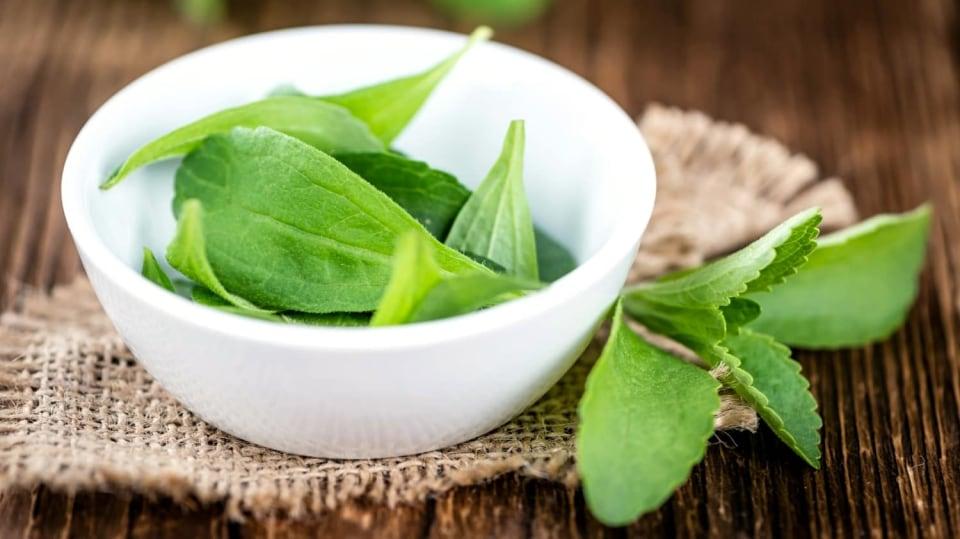 Víte, která rostlina je mnohem sladší než cukr a přitom téměř bez kalorií?  Stévie sladká (Stevia rebaudiana)