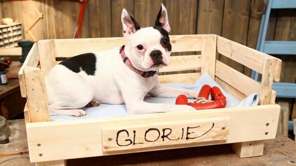 Pelíšek pro psa z přepravky