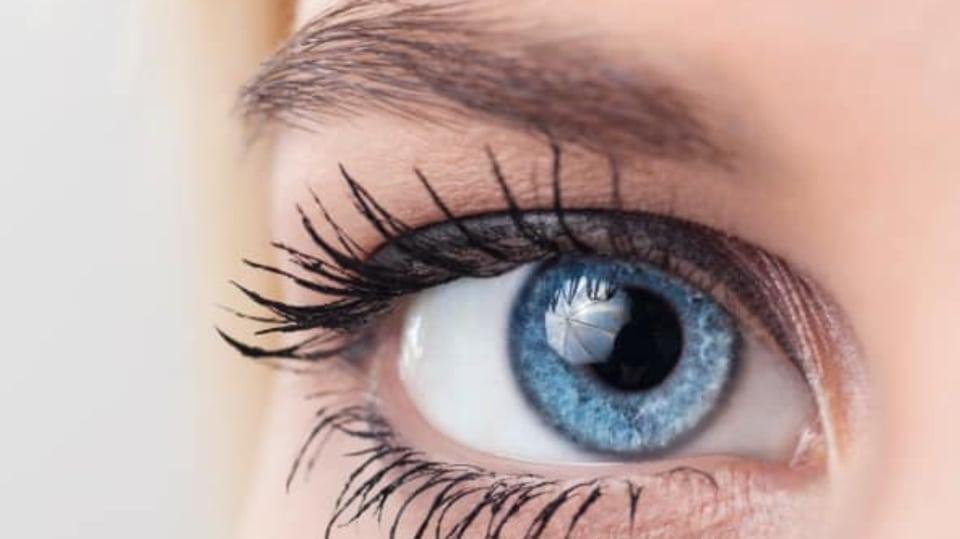 barva očí modroocí