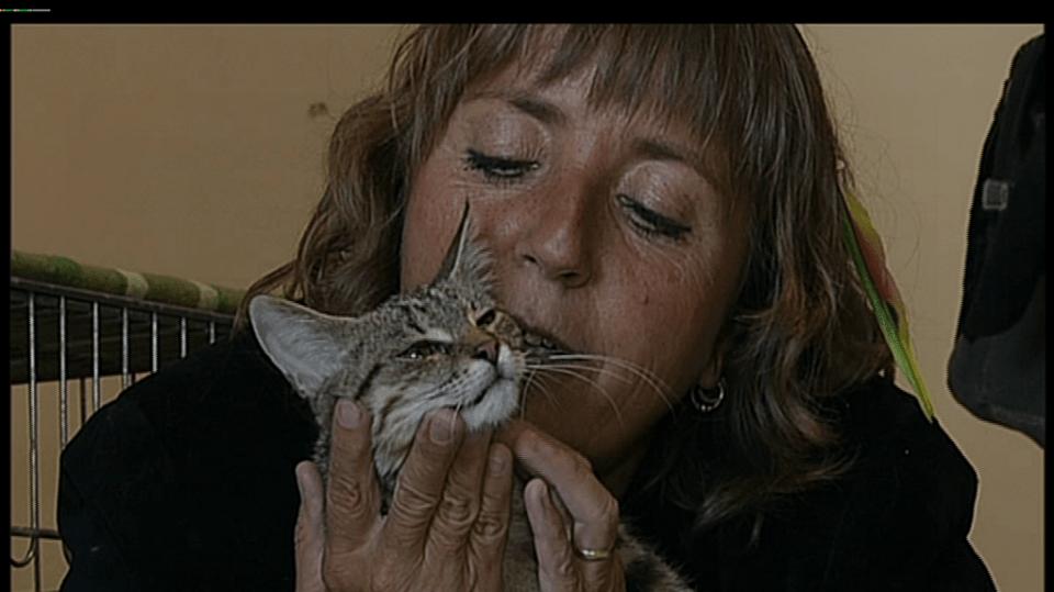 Video VIP zprávy: Herečka Bára Hrzánová je milovnicí zvířat