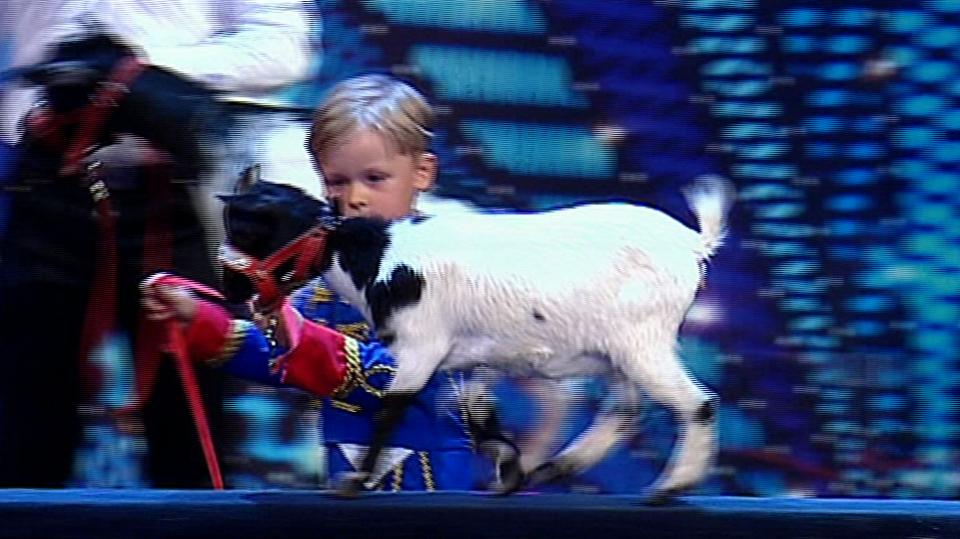 Video VIP zprávy: Nejroztomilejší účastník soutěže Česko Slovensko má talent předvedl drezúru koz a kachen. Porota byla nadšená!