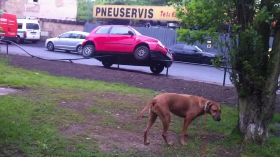 video Divácké zprávy: Velice zvláštně zaparkované auto. Jak se asi odtud bude řidiči vyjítdět?