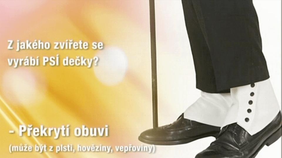 Video VIP zprávy: Jak na tyhle chytáky odpověděly hvězdy?