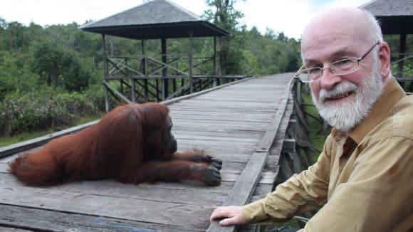 Terry Pratchett a orangutani