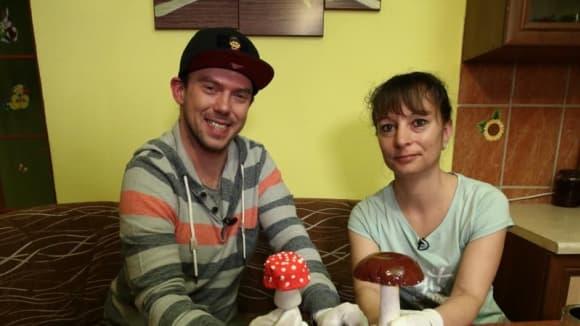 Vychytávky Ládi Hrušky: sádrové houby jako dekorace na zahradu