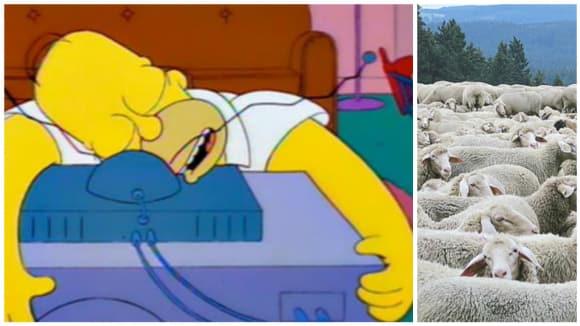 Homer potvrzuje - usínání u televize funguje!