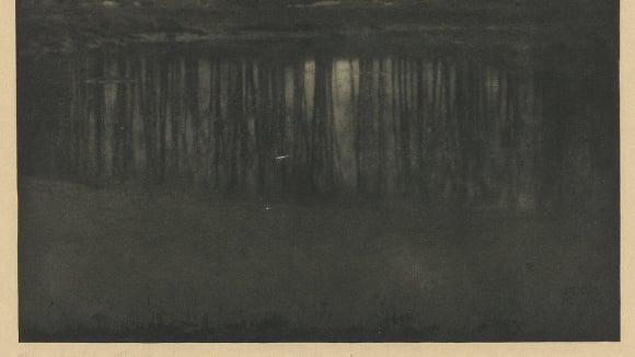 The Pond - Moonlight od Edwarda Steichena, 1904
