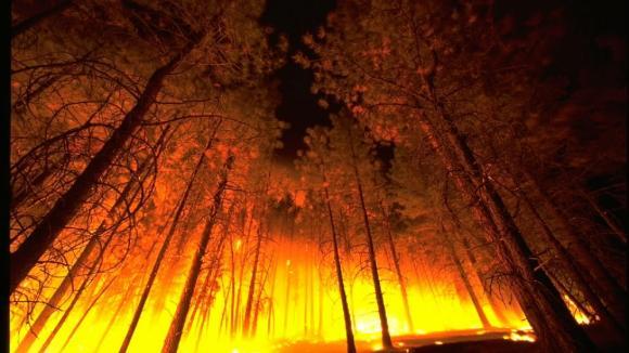 Lesní požár může zachvátit jak Kalifornii, tak Sibiř. A klima tomu čím dál více napomáhá