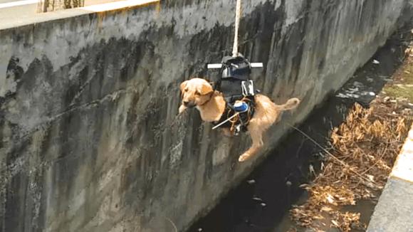 Dron vynáší stěně z kanálu