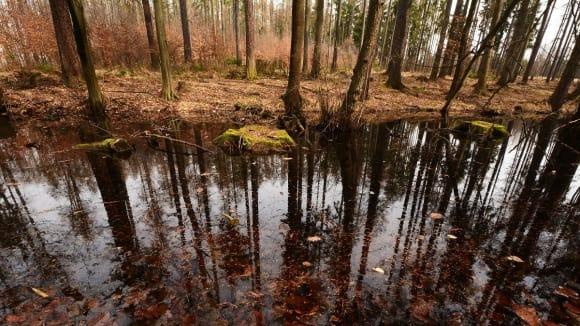 Periodicky mizící vodní zdroj
