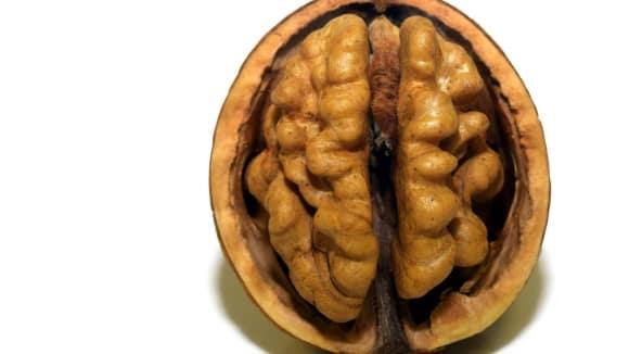 Prospívá dieta mozku?