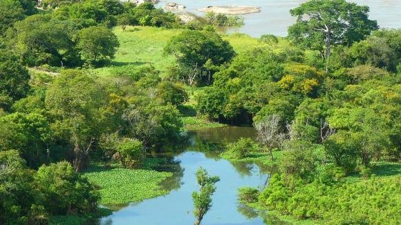 Tok Orinoka v Amazonii - oblast, kde se pohyboval Samuel Fritz