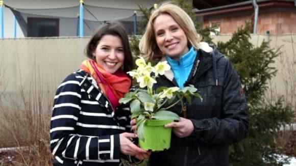 RECEPTÁŘ  PRIMA NÁPADŮ: Předjarní květy na zahradě