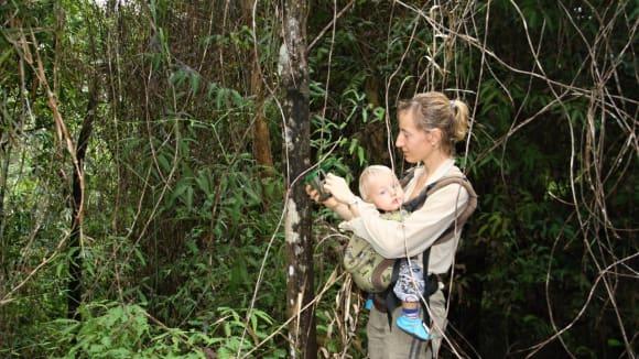Pralesní kladení fotopastí - ostrov Dinagat