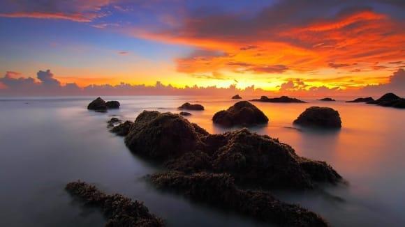 V mořích ubývá kyslík... což je problém