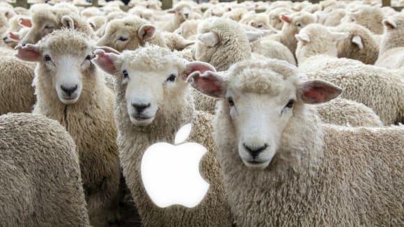 Nejvěrnější ovečky má mezi mobilními telefony Apple
