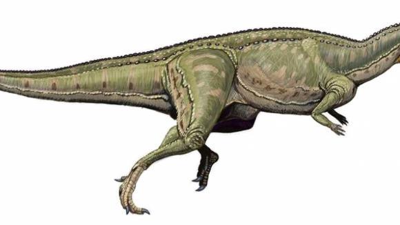 dinosaurus ze skupiny terapodů Ceratosaurus nasicornis - příbuzný nově objevenému druhu