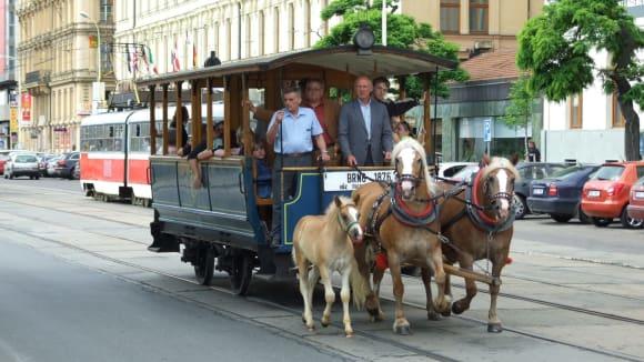 Exhibiční jízda brněnské koněspěžky