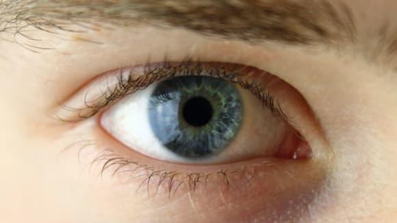 Oko - do duše okno. I to modré.