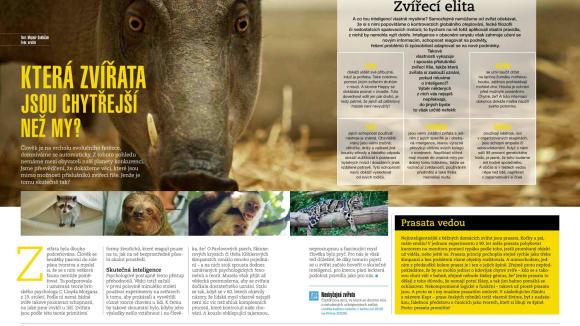 Která zvířata jsou chytřejší než my? Dozvíte se v časopise.